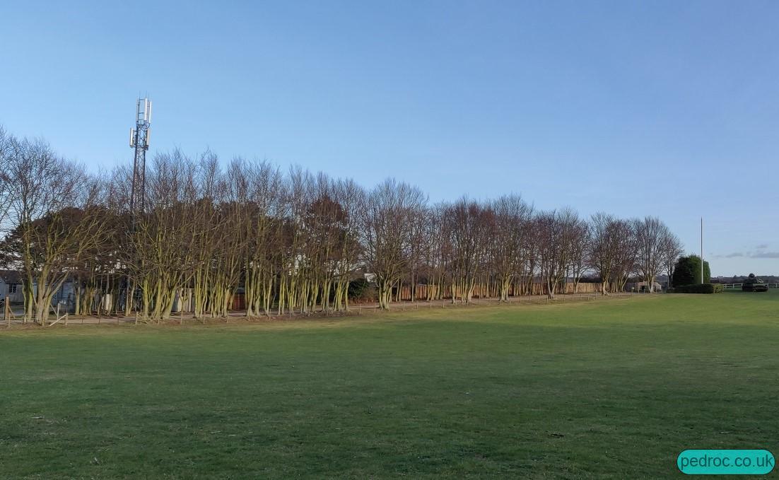 Masts near Weybourne/Foxhills Camping.