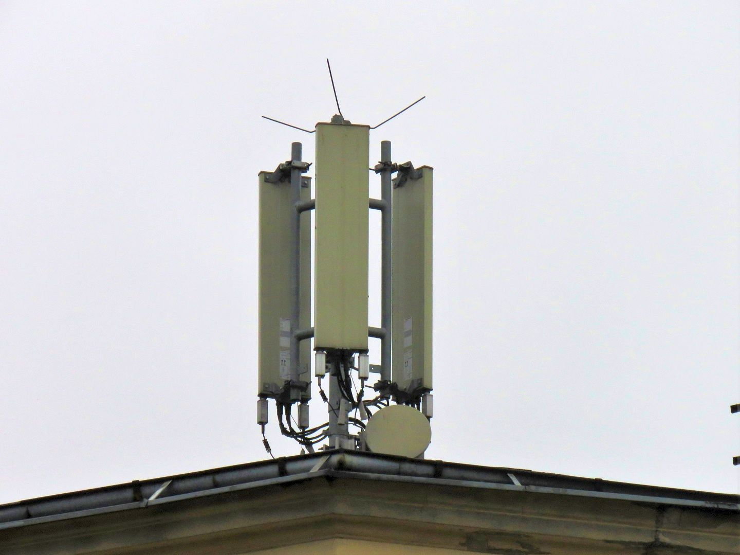 Dual band Kathrein antennas